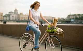 Женские велосипеды и их отличие от мужских — видео