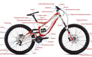 Как выбрать велосипед по росту, весу, типу: советы по выбору