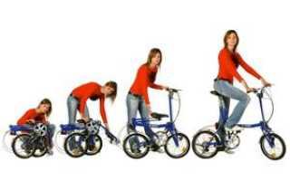 Складные велосипеды для женщин: обзор моделей и советы по выбору